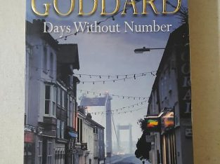 robert goddard -days without number