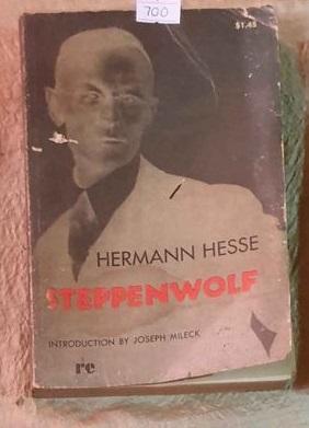 Steppenwolf By Hermann Hess