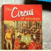 the circus adventure