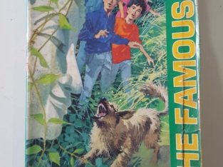 The famous five [five have a mystery to solve]